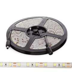 Bande De LED SMD5054 12VDC 10Mm X 5M 60Xm 1380Lm/M IP65  - Couleur Blanc froid