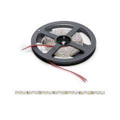 Bande de  Led Type S 300 x SMD2835 40W 12VDC IP20 x 5M  - Couleur Blanc chaud